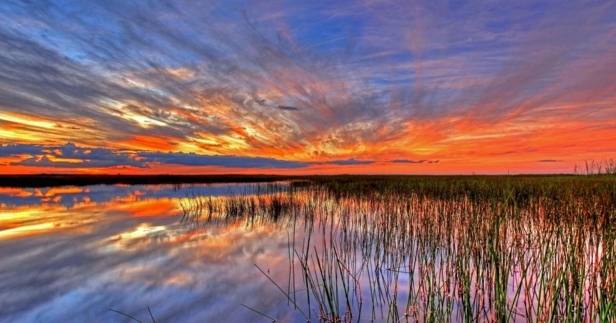 Les 4 visites incontournables en Floride à faire durant votre voyage